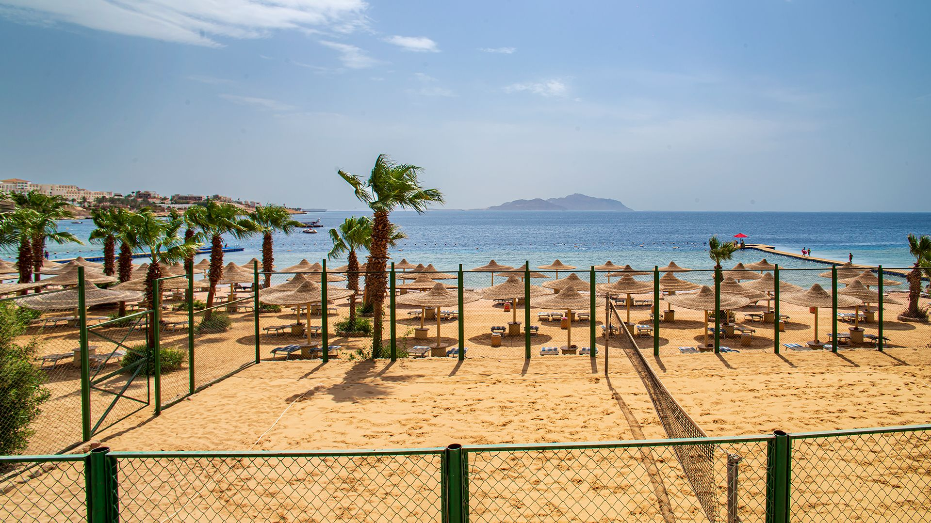 A Beach With Palm Trees And A Fence